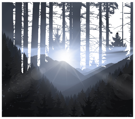 eagle canyon: Abstract nature background. Mountains panorama and silhouette of trunks. Evening in wild woodland. Illustration