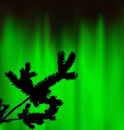 Silhouette of coniferous branch on the background of green sky. Evening. Northern lights. Neon presentation.