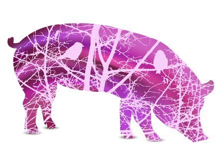 pareja comiendo: Silhouette of boar with branches of trees without leaves. Love couple of birds looking each  other. Abstract pink tones.