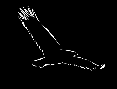 Schematic logo icon of flying eagle on the black background.