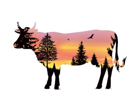 coniferous forest: Silueta de vaca con árboles de coníferas en el fondo del cielo colorido. Puesta de sol.