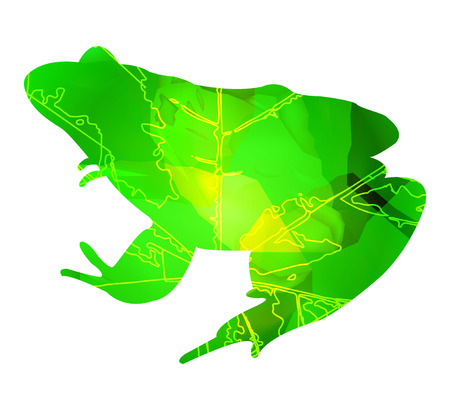croaking: Silhouette of frog with leaf veins and stone cubes. Can be used as badge of french restaurant. Illustration