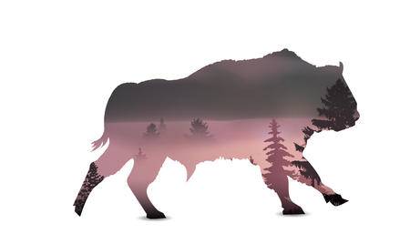 Silhouette of running bull with panorama of mountains and pine forest. Lights of sunset. Thick fog.
