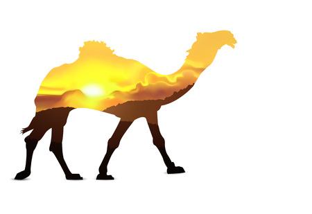 Silhouette of camel with hills of desert. Sunset. Golden tones. Illustration