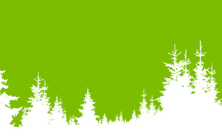 Horizontal banner of coniferous wood in green and white tones. Stock Photo