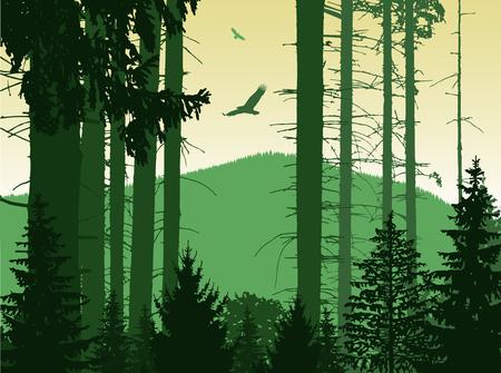 ridge: Image landscape. Eco banner. Green and yellow tones. Stock Photo