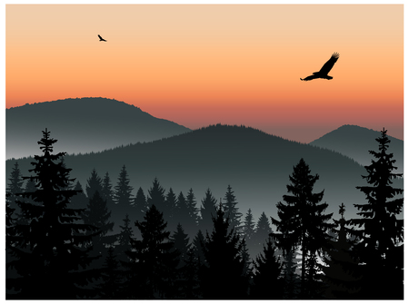 Landscape. Panorama of mountains. Sunset. Mist. Flying eagles. Stock Photo