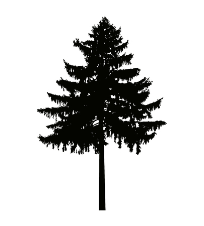松の木のイメージ シルエット。ポスター、バッジ、エンブレム、バナー、アイコン、記号、装飾として使用することができます。