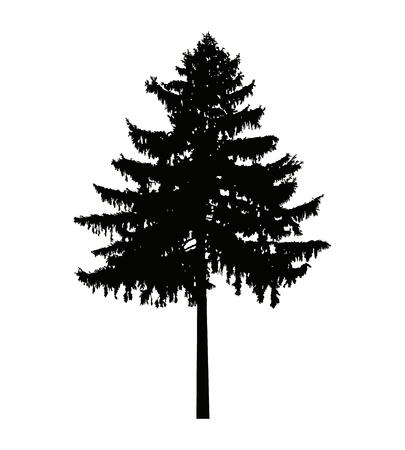 Imagen silueta de pino. Puede ser utilizado como cartel, insignia, emblema, bandera, icono, signo, decoración.