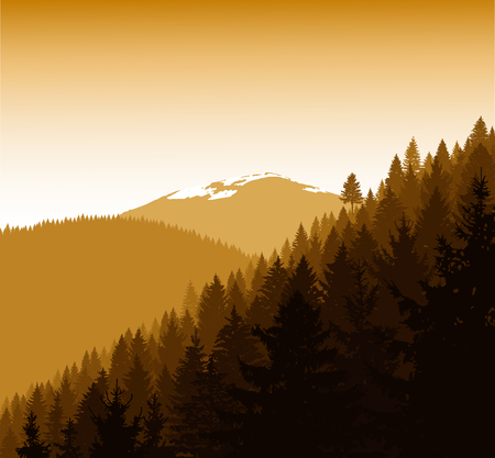 mountaineering: Panorama of mountains. Silhouette of mountains with snow and coniferous trees. Golden autumn. Can be used as eco banner.