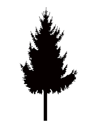 coniferous: Silhouette of pine tree. Can be used as poster, badge, emblem, banner, icon, sign, decor... Stock Photo