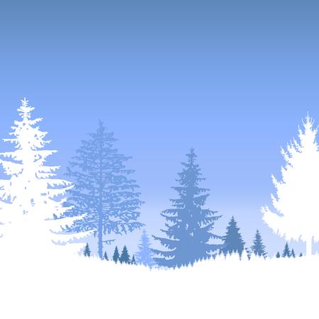 Landscape. Forest. Winter.