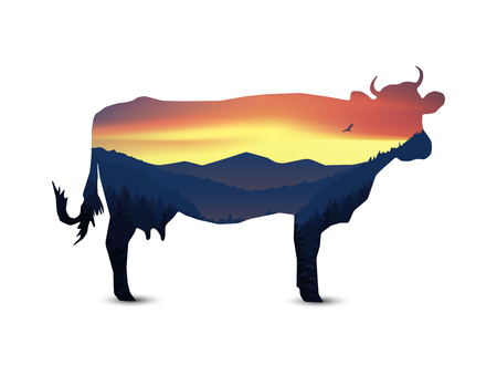 animal silhouette: Silhouette of cow with panorama of mountains. Valley(canyon).  Evening. Aurora. Stock Photo