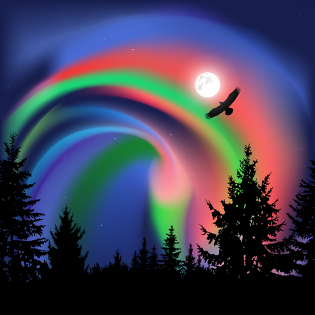 Silhouette of coniferous trees on the background of colorful sky.  Flying eagle. Night. Northern lights. Stock Photo