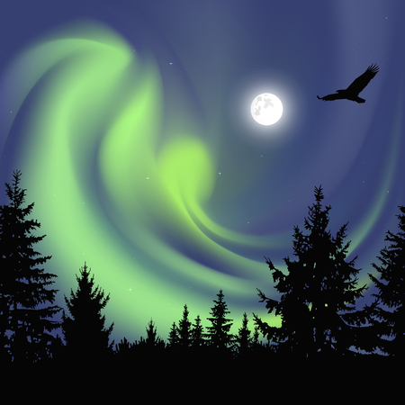 Silhouette of coniferous trees on the background of colorful sky.  Flying eagle. Night. Moonlight.  Green northern lights Stock Photo