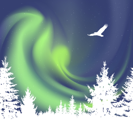 Abstract white silhouette of coniferous trees on the background of colorful sky.  Flying eagle. Green northern lights.
