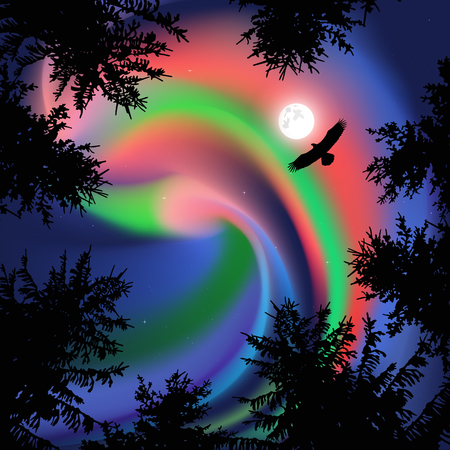 Silhouette of coniferous trees on the background of colorful sky. Flying eagle.  Northern lights.   View from below. Stock Photo