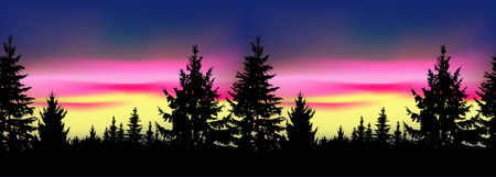 Silhouette of coniferous trees on the background of colorful sky. Seamless. Northern lights. Stock Photo