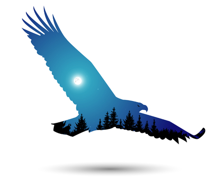 animal silhouette: Silhouette of eagle with  coniferous trees on the background of blue sky.  Moonlight. Stock Photo