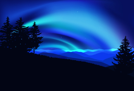 Silhouette of coniferous trees on the background of colorful sky.  Flying eagles. Night. Northern lights. Stock Photo