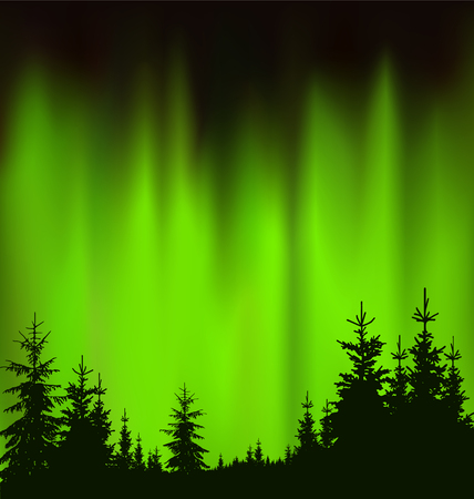Silhouette of coniferous trees on the background of green sky. Evening. Northern lights. Neon presentation.
