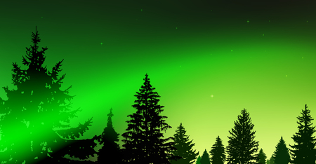 Silhouette of coniferous trees on the background of colorful sky.  Night. Northern lights. Green and yellow tones. Stock Photo
