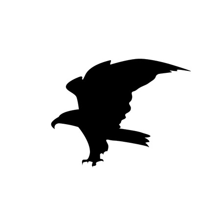 goshawk: Silhouette of flying eagle with big claws.