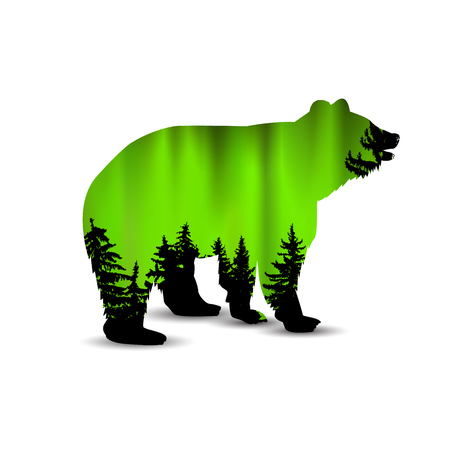 Silhouette of bear with coniferous trees on the background of green sky. Evening. Northern lights.