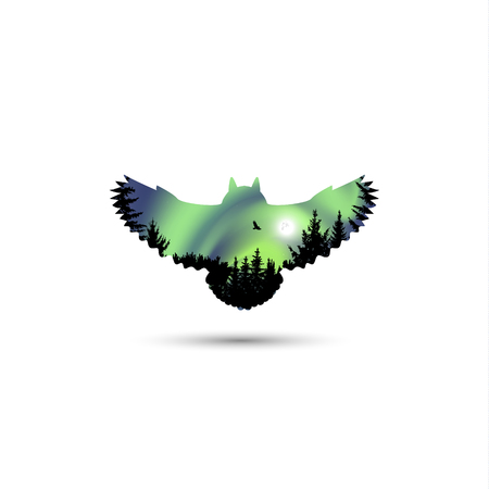 Silhouette of owl with coniferous trees and colorful sky. Green tones. Moonlight.  Night. Northern lights.