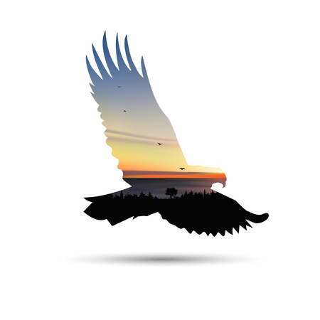 Silhouette of flying eagle with palm trees, sea horizon and colorful sky.