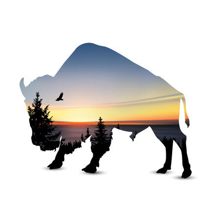 Silhouette of bison with coniferous trees, sea horizon and colorful sky.