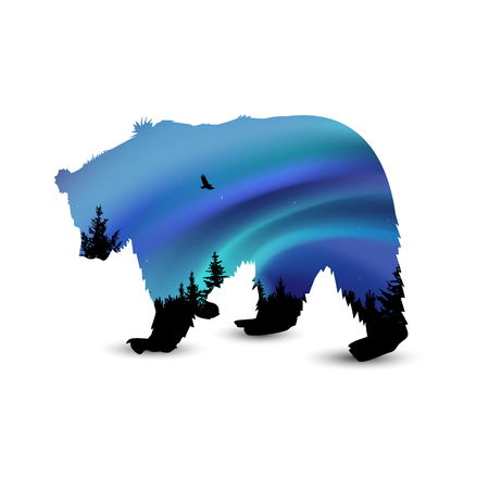 Silhouette of wild bear with coniferous trees on the background of colorful sky. Northern lights.