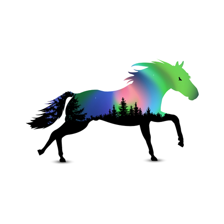 Silhouette of running horse with coniferous trees on the background of colorful sky.  Northern lights.