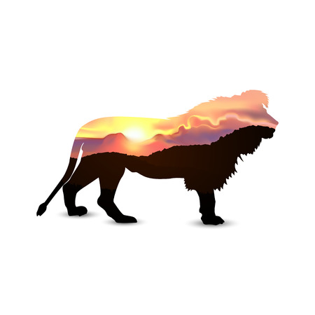 Silhouette of lion with african savannah and colorful sky. Sunset.