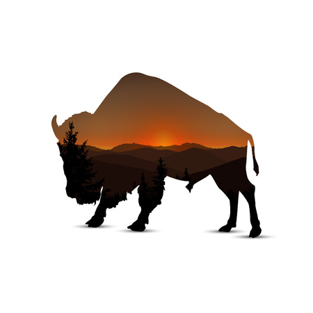 Silhouette of buffalo with panorama of mountain  and coniferous trees. Brown shades. Sunset.