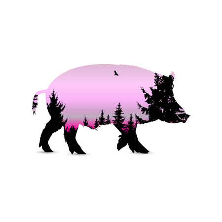 Silhouette of boar with coniferous forest on the background of pink (violet) sky. Evening.