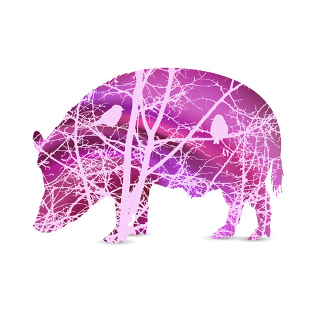 Silhouette of boar with branches of trees without leaves. Love couple of birds looking each  other. Abstract pink tones.