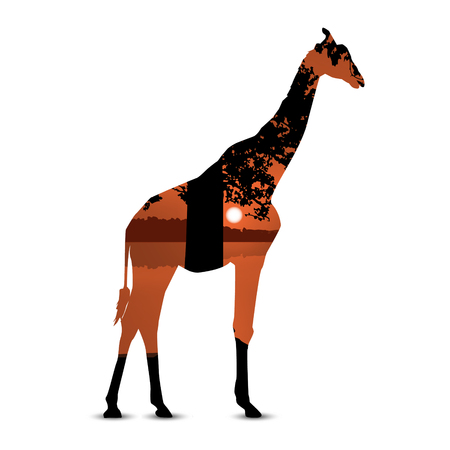 Silhouette of giraffe with  panorama of african landscape. Black and brown tones.