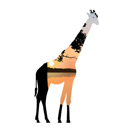 Silhouette of giraffe with colorful sky and panorama of african landscape. Colorful sunset. Иллюстрация