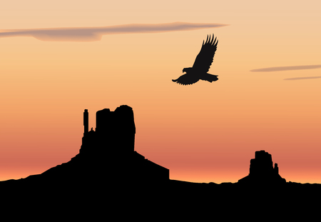 Landscape background. Western desert. Rocks. Flying eagle. Colorful sky.