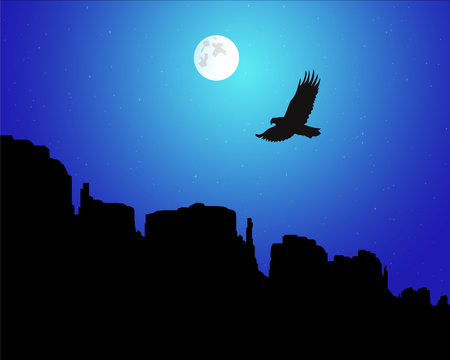 Western desert. Rocks. Flying eagle. Night sky. Moonlight.