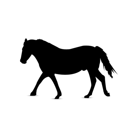 Silhouette of running horse in profile.