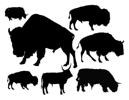 Silhouettes of bulls.