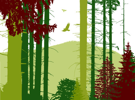 Image landscape. Eco banner. Abstract tones.