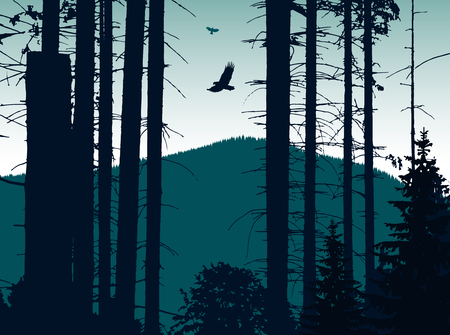 Image landscape. Eco banner. Blue tones.