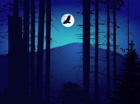 Image landscape. Eco banner. Night. Moonlights.