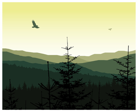 Image landscape. Morning in mountains. Birds in sky. Green and yellow tones. Illustration