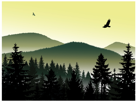 Image landscape. Panorama of mountains. Flying eagles. A fog. Green and yellow tones. Stock Illustratie