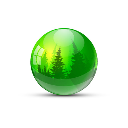 Image design. Green glassy water drop with coniferous trees.