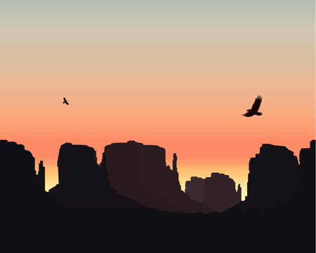 Western desert. Rocks. Flying eagles. Colorful sky. Sunset.